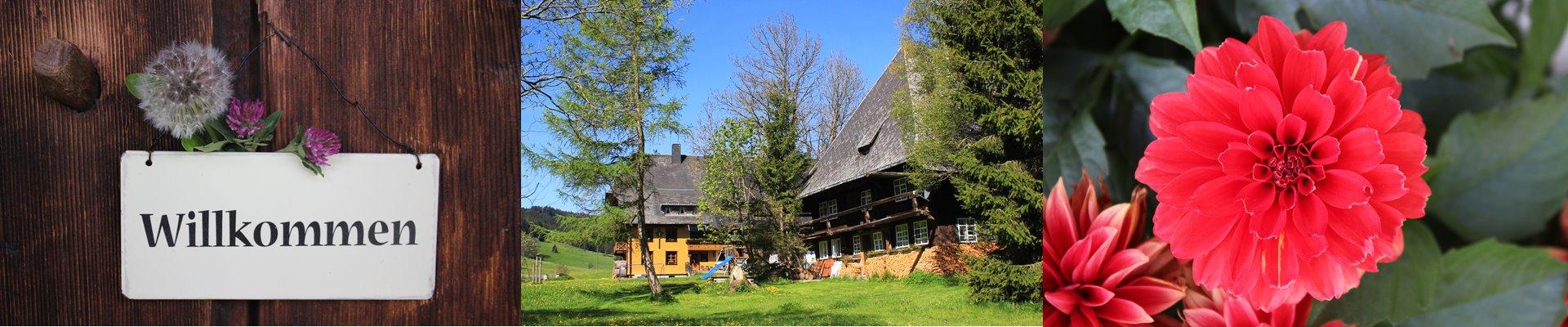 Collage: Willkommnesschild + Ferienhaus und Griesbachhof + rote Blume / Griesbachhof-Schwarzwald
