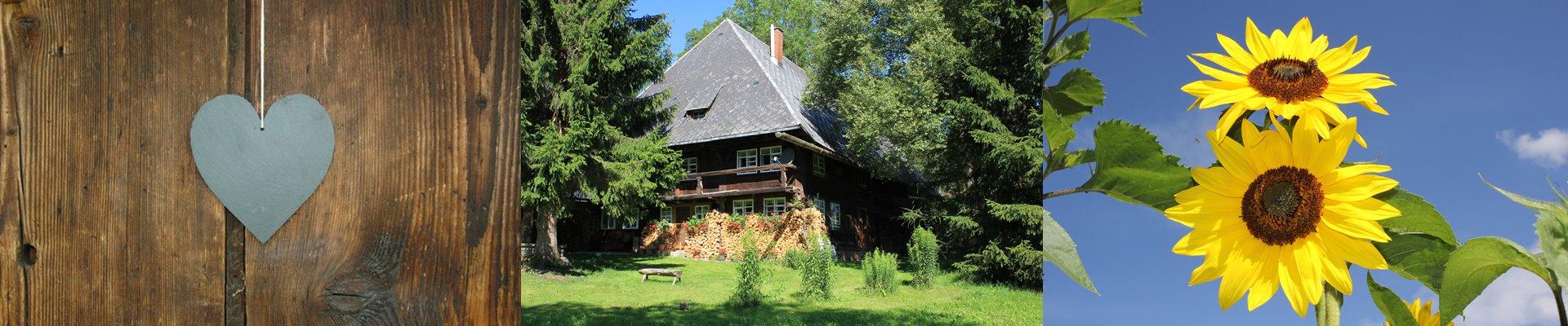 Collage: Herzplakette + Ferienhaus + Sonnenblumen / Griesbachhof-Schwarzwald