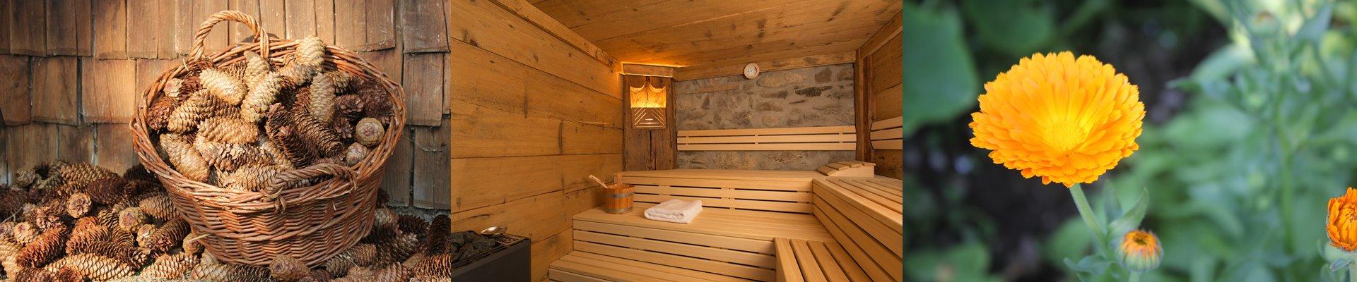 Collage: Tannenzapfen vor dem Ferienhaus + Sauna Innen + Gelbe Blüte / Griesbachhof-Schwarzwald