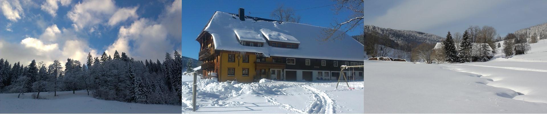 Collage: Griesbachhof im Winter + verschneite Schildwende / Griesbachhof-Schwarzwald