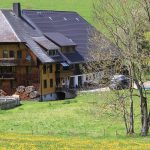 Griesbachhof mit Bauerngarten im Sommer / Griesbachhof-Schwarzwald