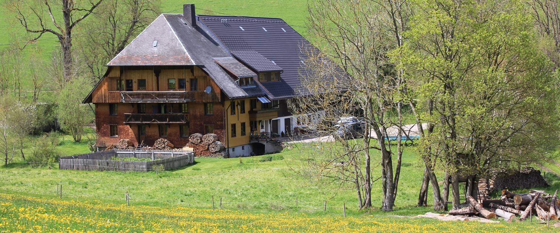 griesbachhof schwarzwald urlaub auf dem traditionellen bauernhof. Black Bedroom Furniture Sets. Home Design Ideas