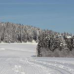 Loipe im Jostal 100 Meter vom Griesbachhof entfernt / Griesbachhof-Schwarzwald