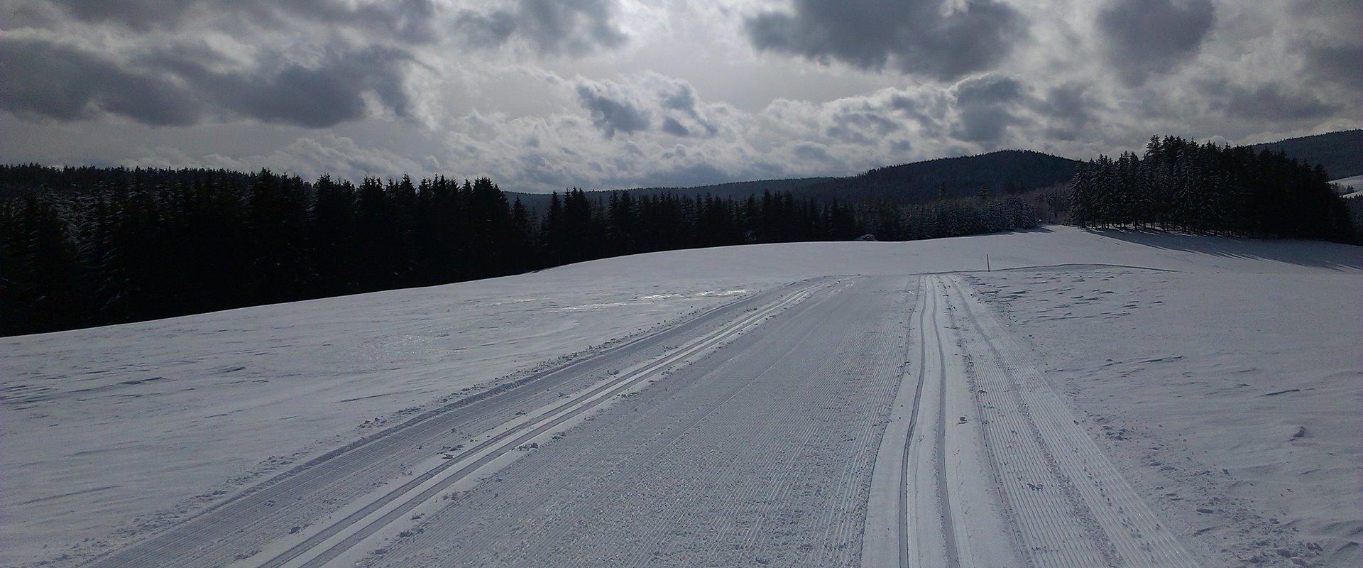 Loipe im oberen Jostal / Griesbachhof-Schwarzwald