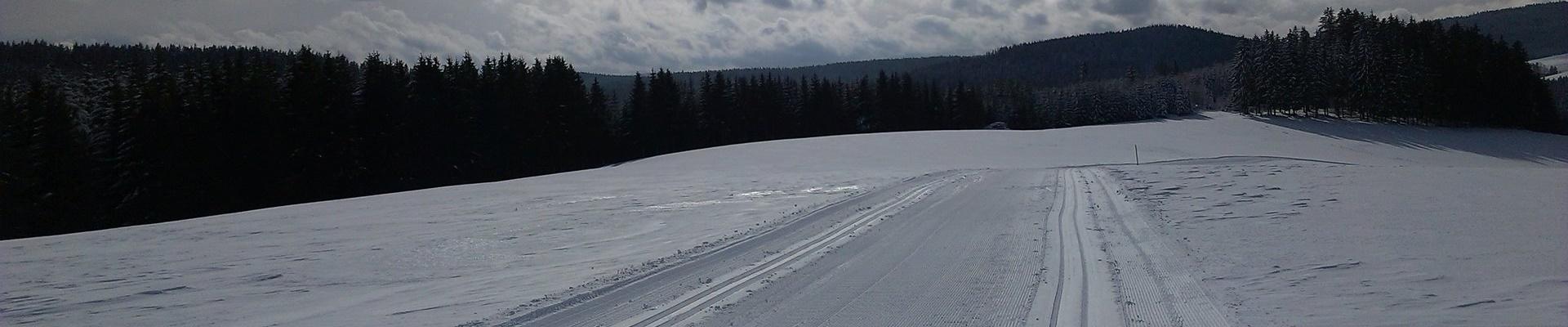Thurnerloipe / Griesbachhof-Schwarzwald