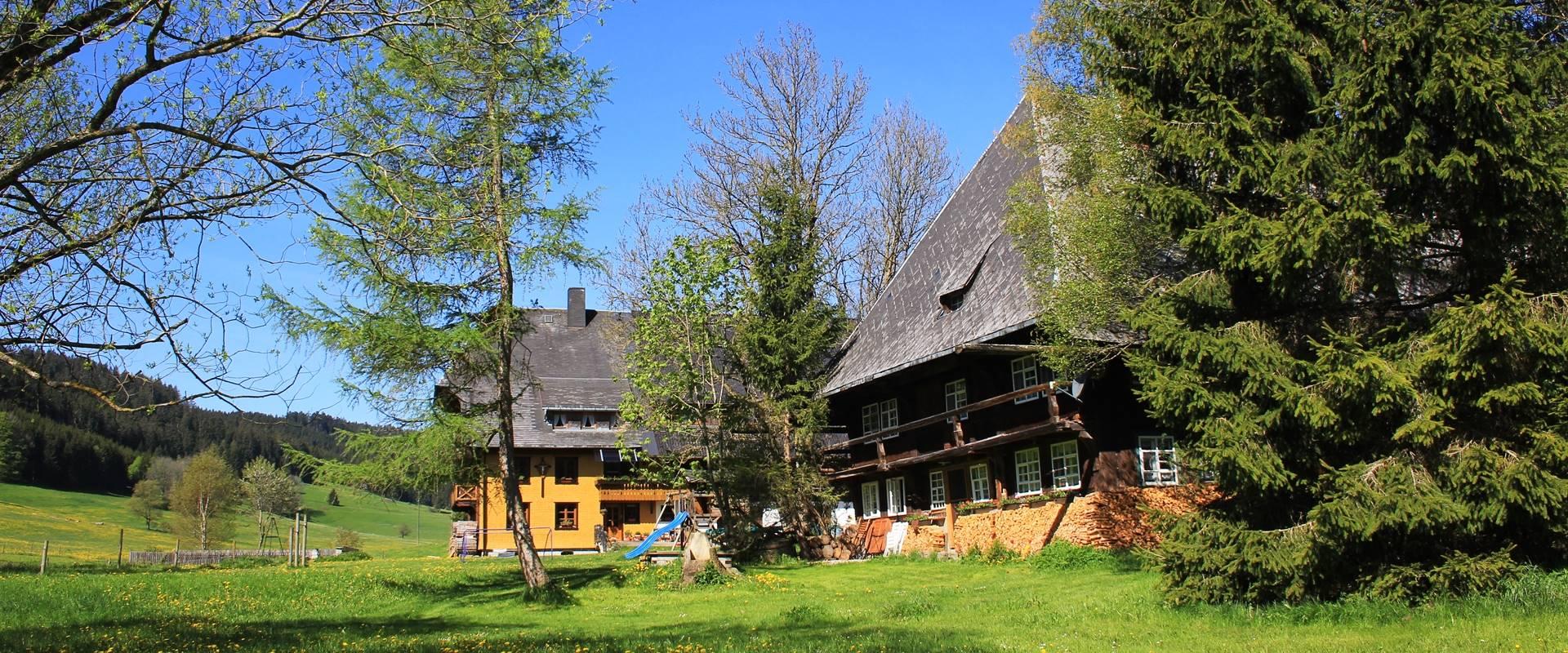 Griesbachhof und Ferienhaus im Sommer / Griesbachhof-Schwarzwald