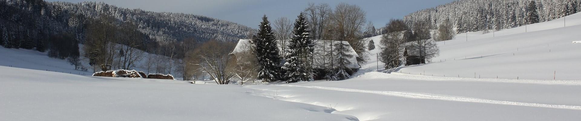 Verschneite Schildwende mit Griesbachhof / Griesbachhof-Schwarzwald