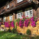 Ferienhaus Außenbereich im Sommer: blumige Südfassade