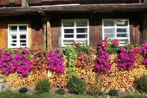 Ferienhaus Außenbereich im Sommer: Blumen und Feuerholz an der Südfassade
