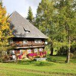 Ferienhaus Außenbereich im Sommer: Das Häusle wird von 2 herbstlichen Bäumen flankiert