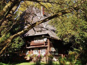 Ferienhaus Außenbereich im Sommer: Das Häusle fotografiert durch den benachbarten Weiden-Baum