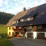 Morgenstimmung am Griesbachhof