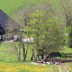 Griesbachhof und Ferienhaus umgeben von Blumenwiesen