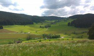 Blick auf die Schildwende und das Grundstueck des Griesbachhofs