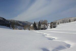 Blick auf die verschneite Schildwende mit Griesbachhof