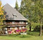 Vorschaubild: Ferienhaus im Herbst / Griesbachhof-Schwarzwald-Ferien
