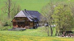 Vorschaubild: Der Griesbachhof / Griesbachhof-Schwarzwald-Ferien