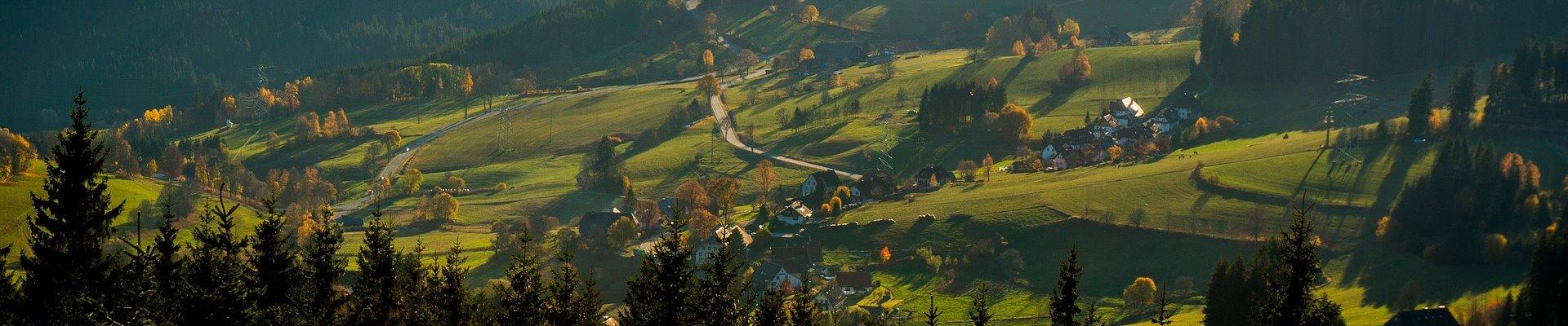 Erlebnis Slider 1920x400: Wiesen und Wälder des Schwarzwalds