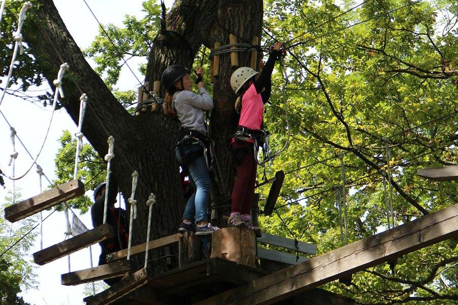 Natur Attraktion: klettern im Kletterwald