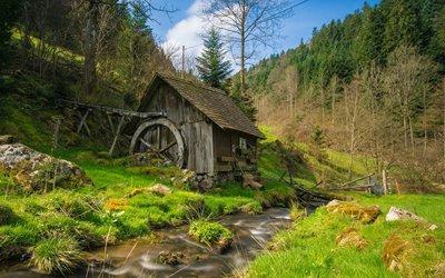 Tradition Attraktion Erlebnisbox: Mühle im Schwarzwald