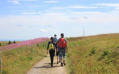 Sport im Sommer Erlebnisbox: Wanderung am Feldberg