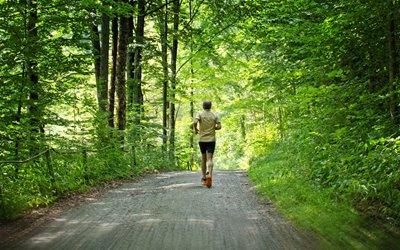 Sport im Sommer Erlebnisbox: Jogging am Schluchsee