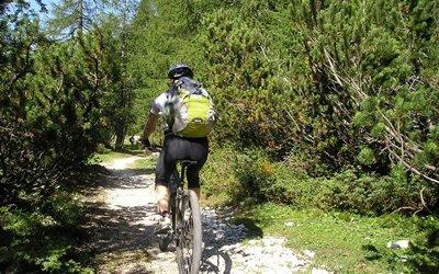 Sport im Sommer Erlebnisbox: Mountainbiken durch idyllische Wälder
