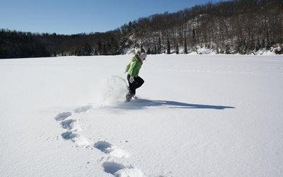 Sport im Winter Erlebnisbox: Schneeschuhwandern im verschneiten Schwarzwald