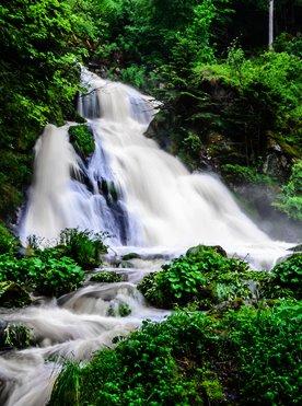 Willkommen Trailer Box Erlebnisse Attraktionen Natur: Triberger Wasserfälle