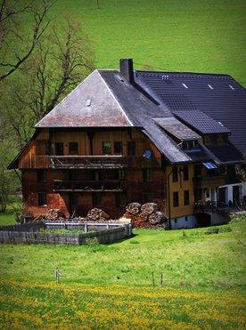 Willkommen Trailer Box: Der Griesbachhof mit Bauerngarten umgeben von Löwenzahnwiesen