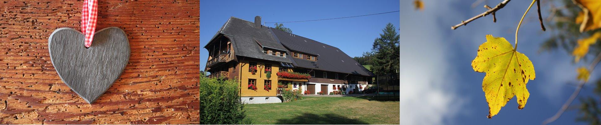 Griesbachhof Slider: Collage aus Schieferherz vor Altholz + Der Hof am Morgen + Ahornblatt im Herbst