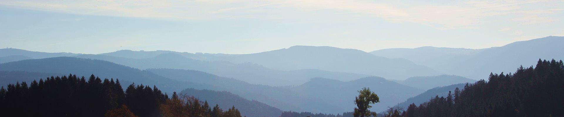 Griesbachhof Slider: Bergprofil nahe St. Märgen