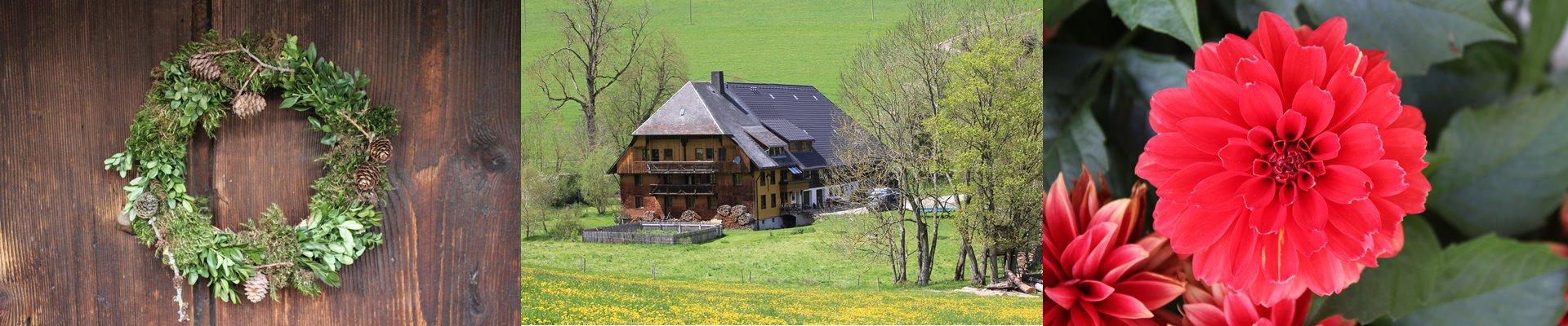 Griesbachhof Slider: Collage aus Herbstkranz + Griesbachhof im Löwenzahn + tiefroter Gartenblume