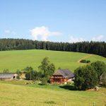 Griesbachhof: der große Laufstall mit Hof und Ferienhaus