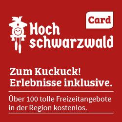 HSW_Card_2017
