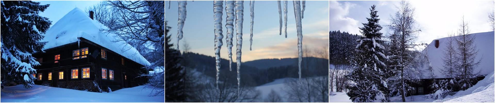 das-Ferienhaus-Haeusle-von-aussen-im-wintergewand-schnee-eiszapfen-Griesbachhof-Schwarzwald
