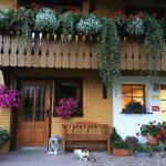 eingang-ferienwohnung-blumenpracht-katze-griesbachhof-schwarzwald